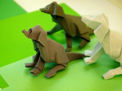 hunde von dave brill origami treffen 2012 in freising origami kunst. Black Bedroom Furniture Sets. Home Design Ideas