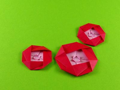 Origami kamelie