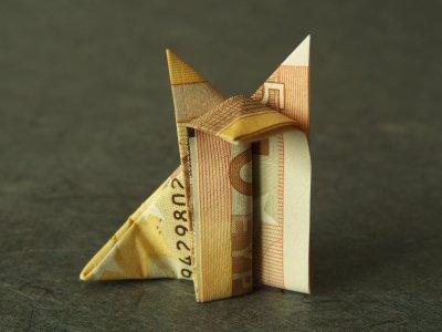 fuchs geldscheine und geldgeschenke origami kunst. Black Bedroom Furniture Sets. Home Design Ideas